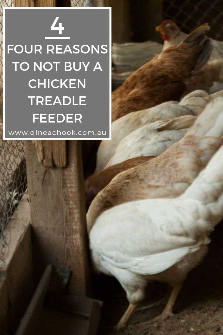 4 reasons not to buy a chicken treadle feeder