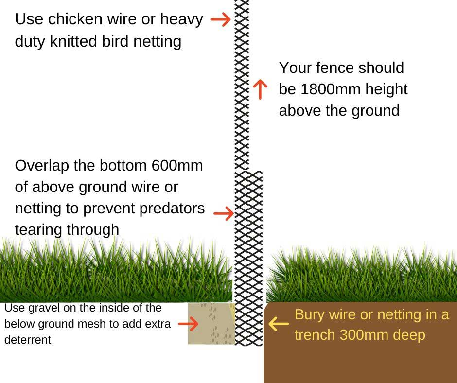 How to make a chicken run fence