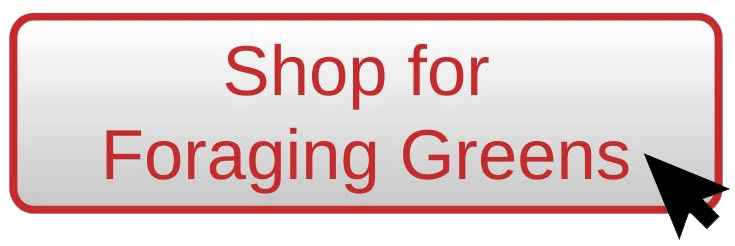 Shop for foraging greens